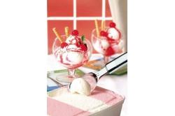 Tramontina Speciale ложка для мороженого 25704/100